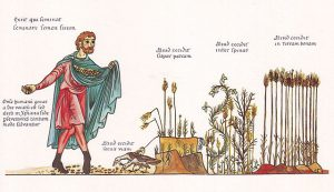 parabole du semeur